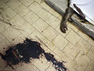 A kép csak illusztráció, nem a Jáhn Ferenc kórházban talált holttestet ábrázolja.