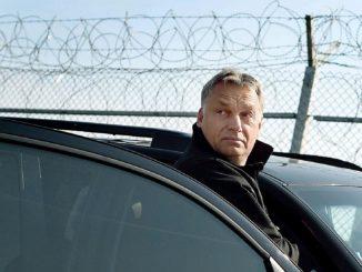 orbán nol